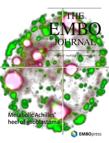 EBMO cover