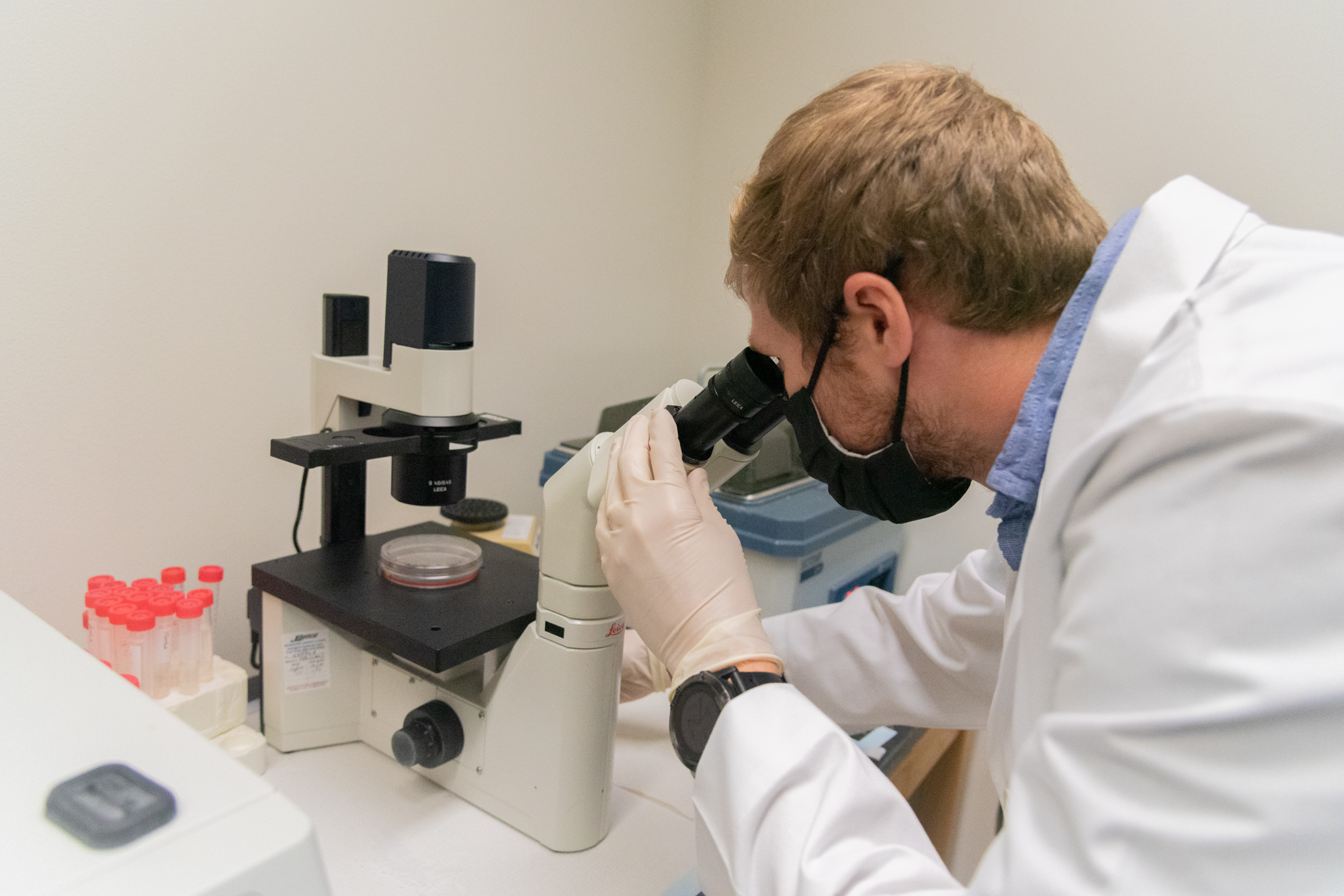 doctor Kidd looking under a microscope