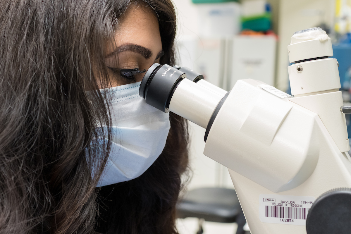 Rana in the lab