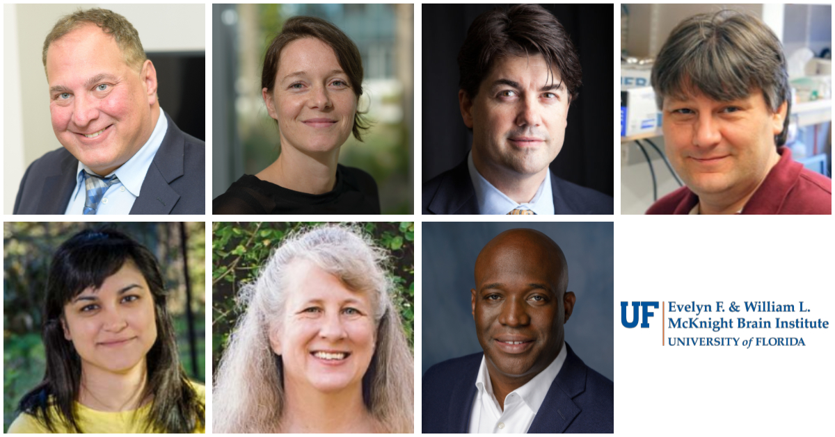 Seven MBI members named UF Research Foundation Professors