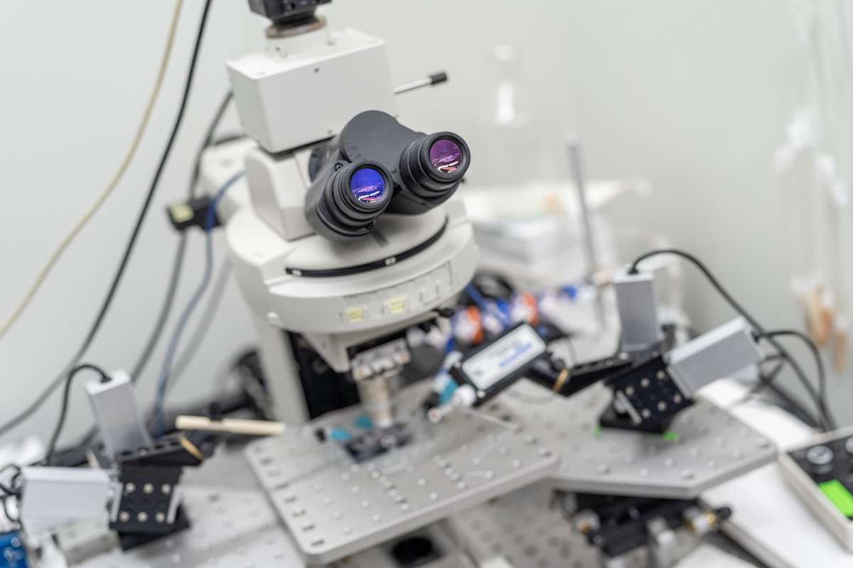 Dr. Adrienn Varga lab