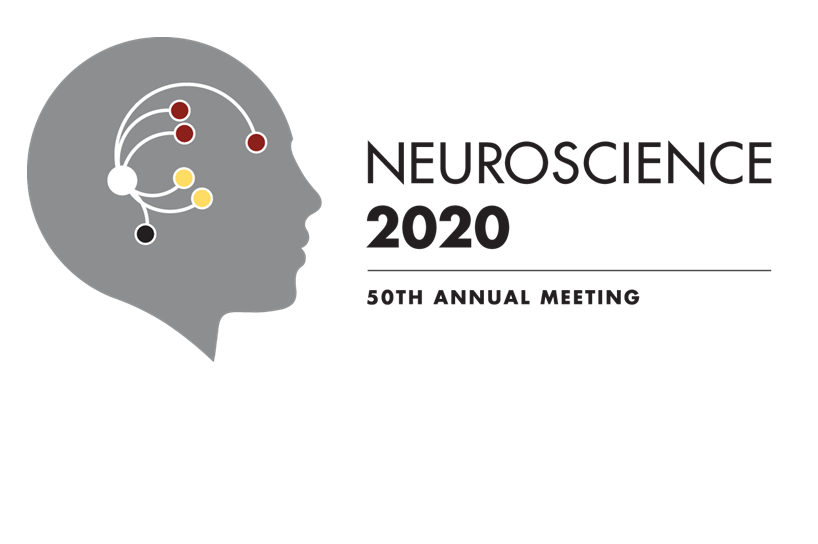SfN 2020 logo